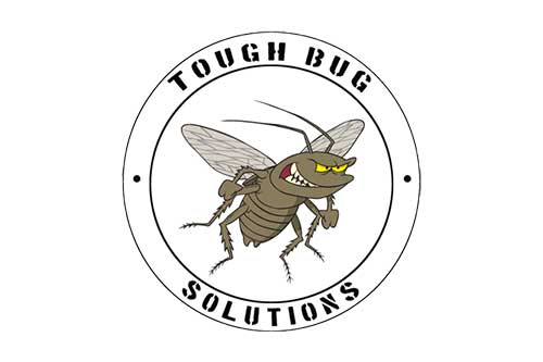 Tough Bug Solutions - Seattle Washington Pest Control